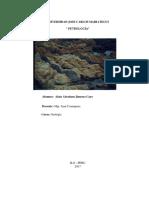 Petrologia - Alain Jimenez Grupo b
