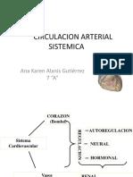 Circulacion Arterial Sistemica
