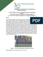 146.pdf