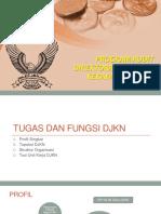 Program Audit.pptx