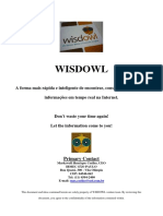 Plano de Negócio Tradicional - Exemplo WISDOWL