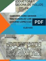 productoraydistribuidoradepollos-131005132912-phpapp01