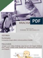 Brachial Palsy Riv