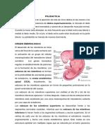 POLIDACTILIA y Sindactilia Monografia