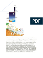Los factores ecológicos.docx
