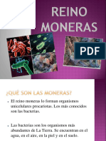 01-Reino-Moneras-y-Protoctistas-we-love-Romualdo.pptx