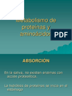 Metabolismo de Aminoacidos y Proteinas (1)