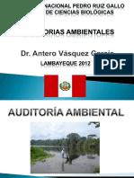 Auditorias Ambientales (2) (1)