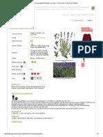 Lavandula Angustifolia English Lavender, True Lavender PFAF Plant Database