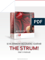 Ilya_Efimov_Acoustic_Guitar_Strum_Manual.pdf