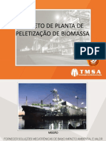 2 Seminario Biomassa 10