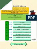diapositivas tesina