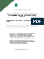 P0119_Adrian Castillo_Informe Final_011214.pdf