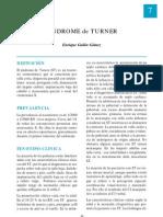 7 Turner
