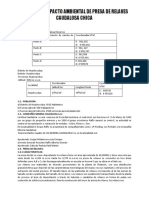 35165098-INFORME-DE-IMPACTO-AMBIENTAL-EN-HUANCAVELICA.pdf