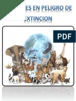 Animales Extincion
