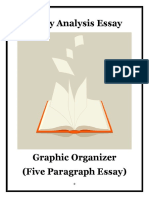 literaryanalysisessaygraphicorganizer  1