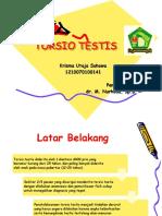 Torsio Testis (Bedah)