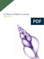 NIIF Pyme de Bolsillo, Deloitte 2010