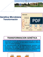 5 Genetica Microbiana Transformacion
