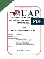 Union y Adhesiuon Celular Monografia Uap