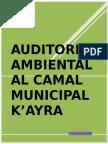 314370497-AUDITORIA-AMBIENTAL