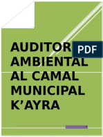 314370497-AUDITORIA-AMBIENTAL