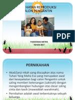 Kesehatan Reproduksi Calon Pengantin