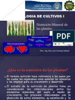 FISIOLOGIA - nutricion-mineral123