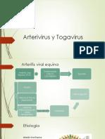 Arterivirus y Togavirus