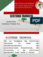 sistema T.