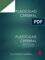 plasticidadcerebral-