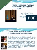 (7)Rol Del Perito en El Ncpp 2