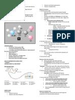AMINO ACIDS (slides).docx