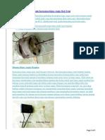 Trik Sederhana Memperbaiki Kerusakan Kipas Angin Mati Total