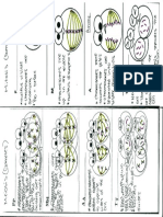 366954427-cell-activity-product