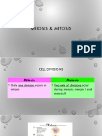 meiosis   mitosis sced4368  4