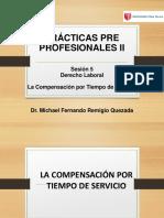 Ppii - Derecho Laboral