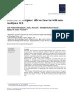 Epstein-Barr Virus EBV test | Polymerase Chain Reaction