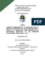 tesis experimental.pdf