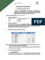 TDR -  ACEROS Y OTROS.doc