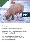 swine flu 1.pps