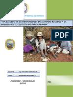 aplicacindelametodologiadesistemasblandosalapobrezaeneldistritodepaucarbamba2-110601204800-phpapp02