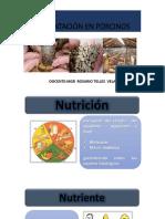 Alimentación en Porcinos