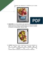 Proceso de Nectar Manzana