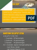 RADANG PADA SSP_2.ppt