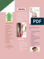 Leaflet Limfoma