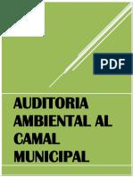314370497-AUDITORIA-AMBIENTAL.docx