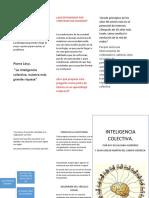 INTELIGENCIA Juan Carlos y Ruy (1) (1)