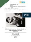 Indice Integral de La Salud Materna e Infantil Por Municipios PR 2009